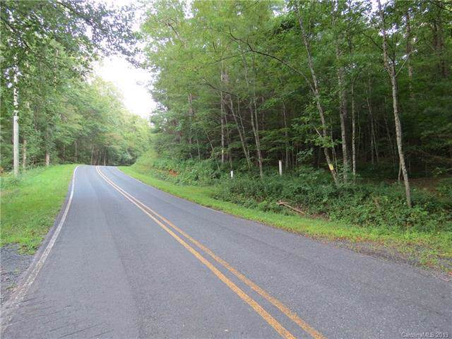 000 Lynn Gap Road, Spruce Pine, NC 28777 (#3537509) :: Homes Charlotte