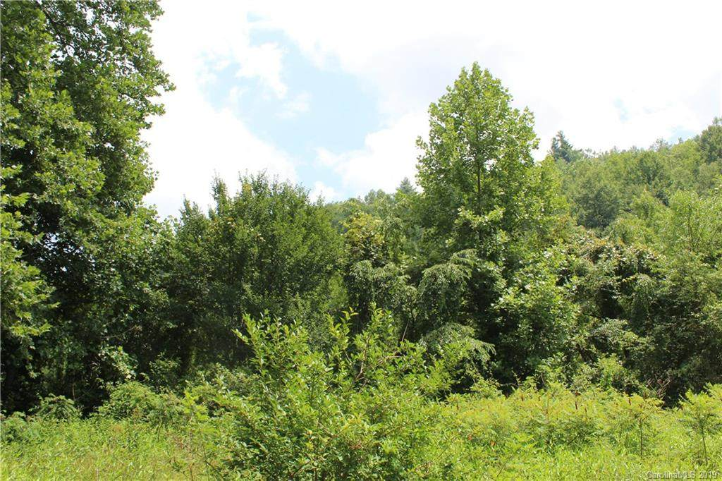 000 Blueberry Farm Road - Photo 1