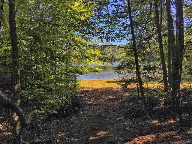 Lot 170 Eagle Lake Drive #170, Brevard, NC 28712 (#3537653) :: LePage Johnson Realty Group, LLC