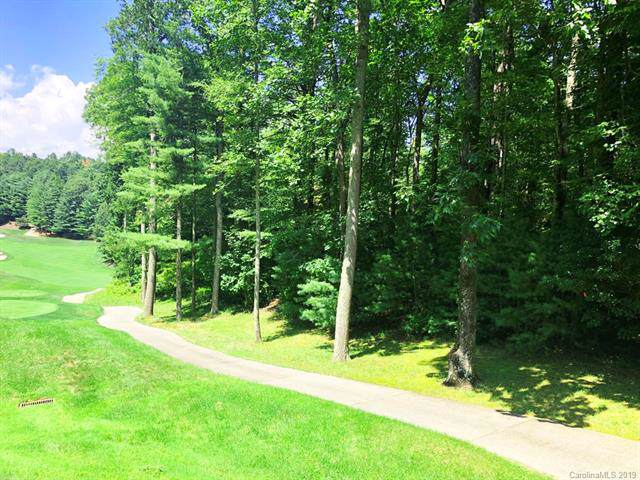 3 Cooper Cove South 53B, Hendersonville, NC 28739 (#3538174) :: Carlyle Properties