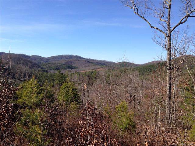 166 Pinegrove Drive, Bostic, NC 28018 (#3538227) :: Mossy Oak Properties Land and Luxury