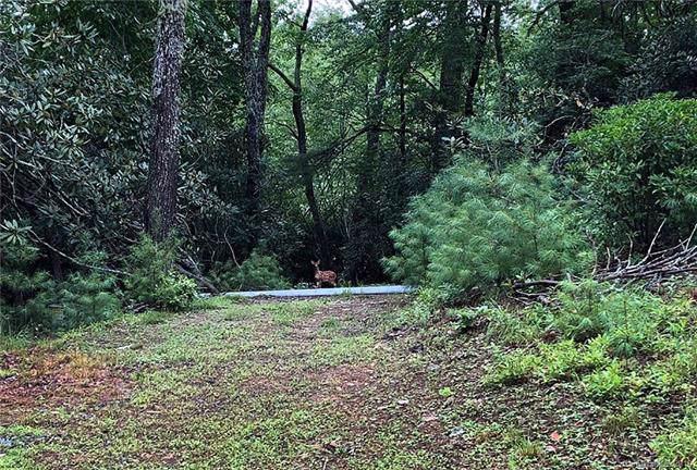 1215 Rebels Creek Road #20, Bakersville, NC 28714 (#3538638) :: Charlotte Home Experts