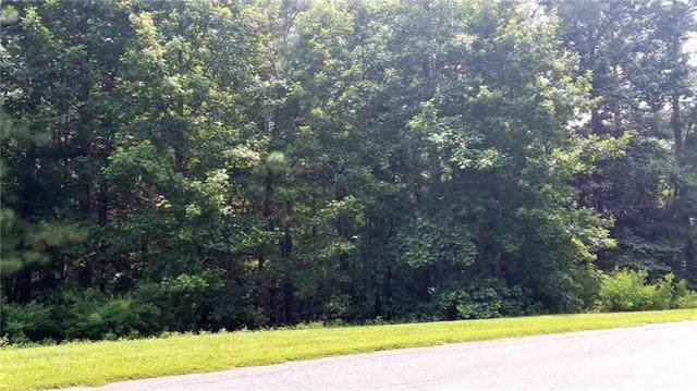 208 Ridge Top Drive, Connelly Springs, NC 28612 (#3538860) :: Carlyle Properties