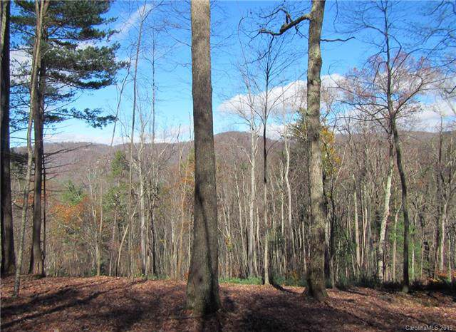 54 Longspur Lane #59, Asheville, NC 28804 (#3539094) :: Carlyle Properties