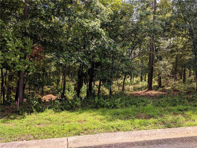 709 Catchpoint Drive #20, Rock Hill, SC 29732 (#3539107) :: Carlyle Properties
