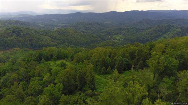 1592 Bone Camp Road, Marshall, NC 28753 (#3539253) :: Carlyle Properties