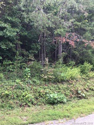 00 W T Wilkins Road, Rutherfordton, NC 28139 (#3540460) :: Rinehart Realty