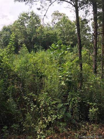 00 W T Wilkins Road, Rutherfordton, NC 28139 (#3540466) :: Rinehart Realty