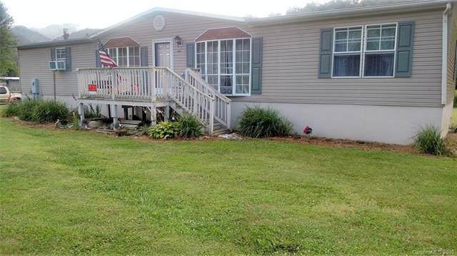 12538  HWY 209 Spring Creek Road #12538, Hot Springs, NC 28743 (#3540510) :: Stephen Cooley Real Estate Group