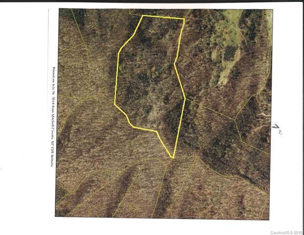 000 Toms Creek Road, Bakersville, NC 28705 (#3540609) :: Rinehart Realty