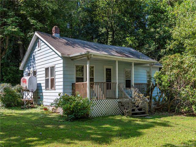 50 Newfound Road, Asheville, NC 28806 (#3540899) :: High Performance Real Estate Advisors