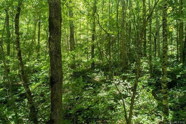 Lot #2 Cedar Creek Farm Road #2, Tuckasegee, NC 28783 (#3541856) :: Keller Williams Biltmore Village