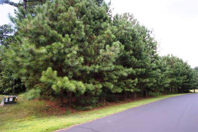 Lot 109 Greens Road #109, Granite Falls, NC 28630 (MLS #3541887) :: RE/MAX Impact Realty