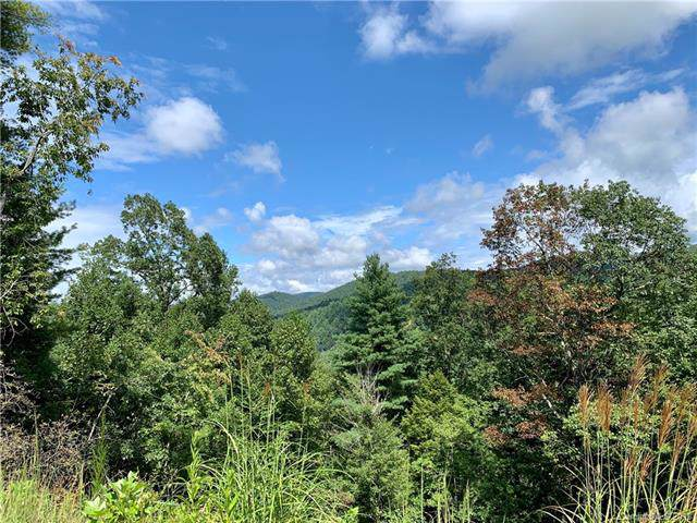 0 Gallimore Road, Flat Rock, NC 28731 (#3541967) :: Mossy Oak Properties Land and Luxury