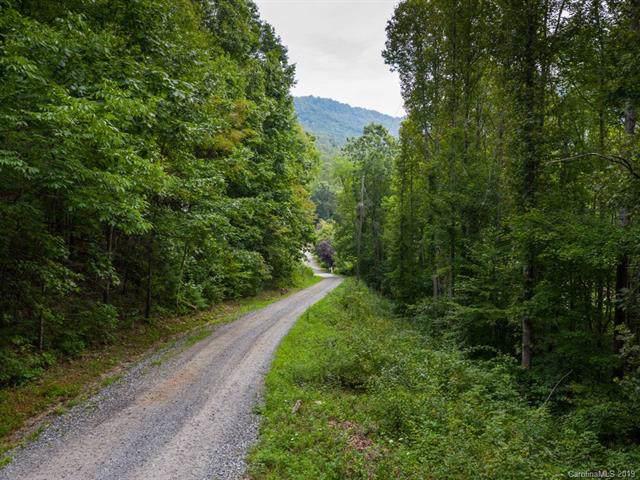 99999 Apple Tree Way, Asheville, NC 28805 (#3542065) :: High Performance Real Estate Advisors