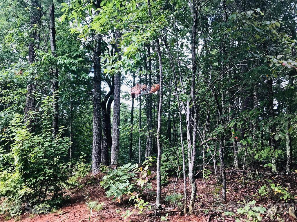 Lot 838B Whispering Hills Lane, Lenoir, NC 28645 (#3542249) :: Homes Charlotte