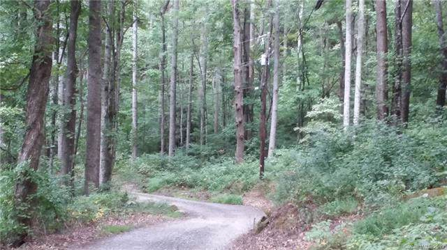99999 Log Gap Road, Fairview, NC 28730 (#3542362) :: Stephen Cooley Real Estate Group