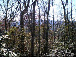 M21 Elk Mountain Trail M21, Brevard, NC 28712 (#3542400) :: Homes Charlotte