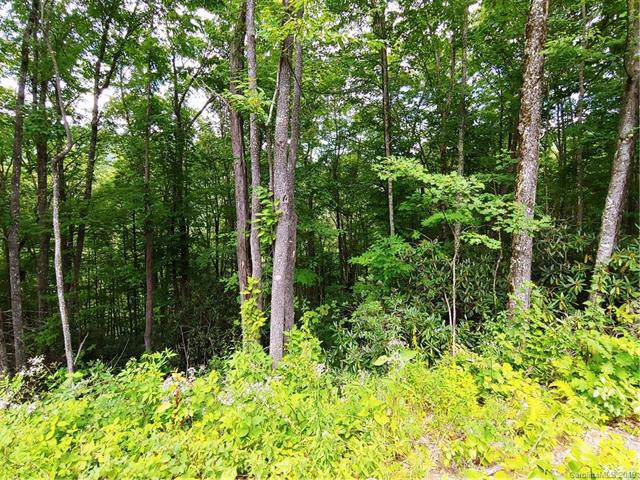 Off Plott Balsam Road Lot 2, Maggie Valley, NC 28751 (#3542464) :: SearchCharlotte.com