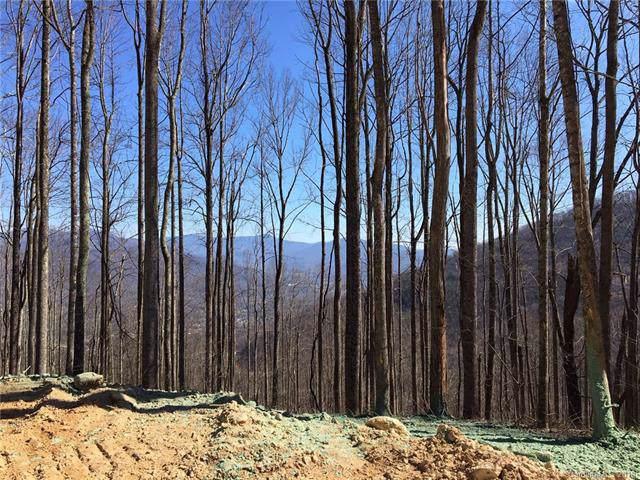 1353 Daydream Ridge #57, Swannanoa, NC 28778 (#3542596) :: Rinehart Realty