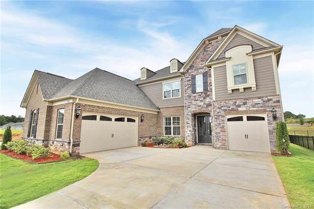 11103 Egrets Point Drive, Charlotte, NC 28278 (#3542746) :: Robert Greene Real Estate, Inc.