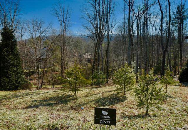 19 Mountain Orchid Way #77, Arden, NC 28704 (#3542784) :: Rinehart Realty