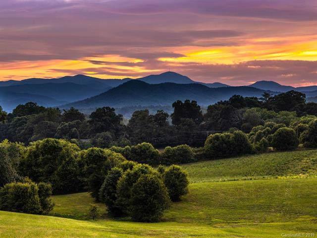13 Pisgah Ridge Trail #40, Mills River, NC 28759 (#3542861) :: Keller Williams Professionals