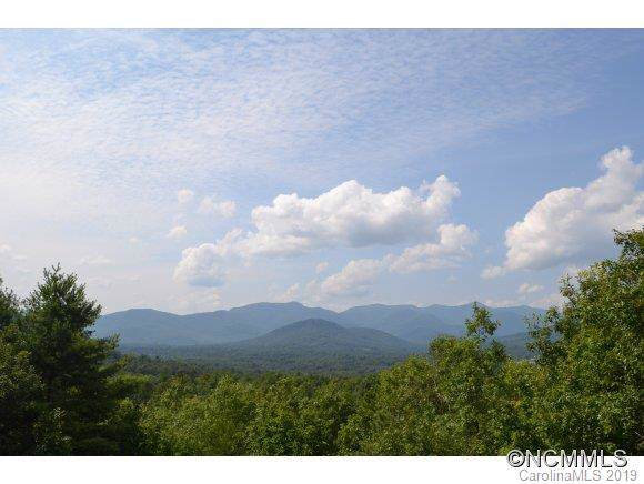 193 Settings Boulevard, Black Mountain, NC 28711 (#3542885) :: SearchCharlotte.com