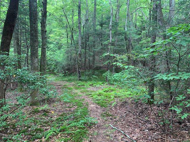 lot 14 Liz Reece Road, Rosman, NC 28772 (#3542934) :: Roby Realty