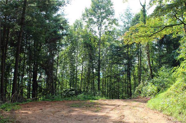 Tract B Burnette Reeves Road, Leicester, NC 28748 (#3543017) :: Miller Realty Group