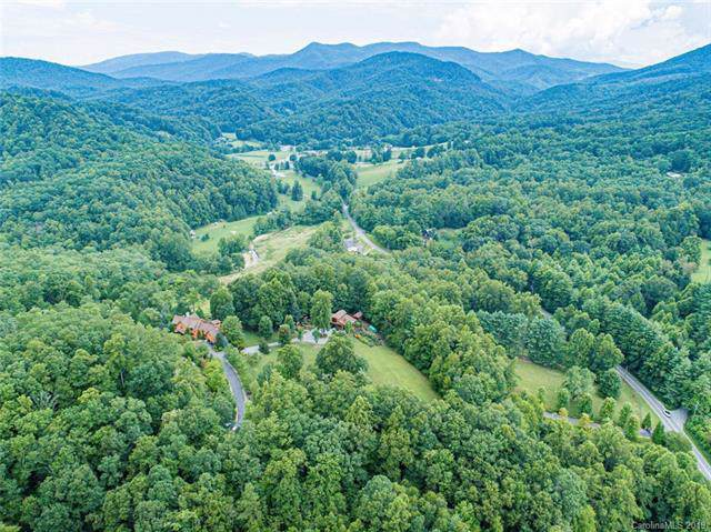 649 Morgan Hill Road, Fairview, NC 28730 (#3543029) :: High Performance Real Estate Advisors