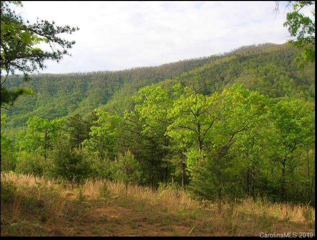 102 Trillium Lane C-3, Black Mountain, NC 28711 (#3543299) :: Rinehart Realty