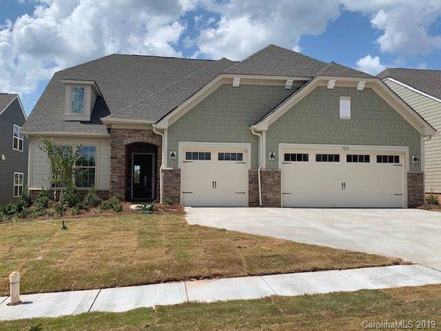 7010 Brass Bugle Place, Lake Wylie, SC 29710 (#3543336) :: Team Honeycutt