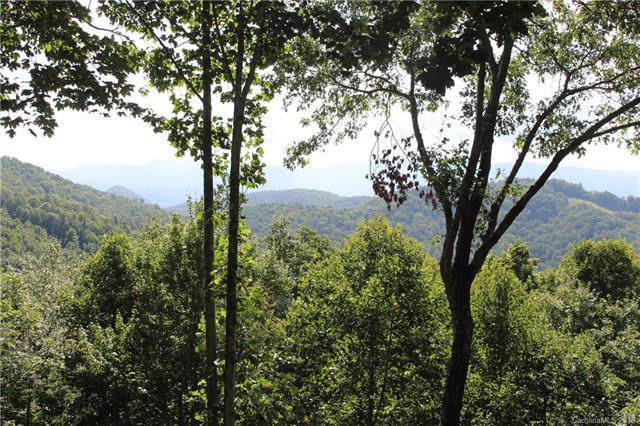 64 High Line Road #64, Sylva, NC 28779 (#3543407) :: Carlyle Properties
