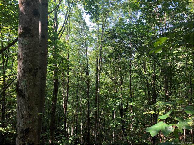 11 Gardner Lane, Pisgah Forest, NC 28768 (#3544291) :: Carlyle Properties