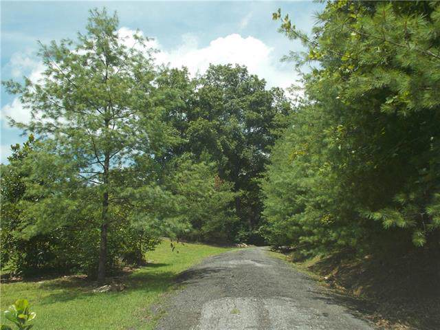 0000 Albert Williams Road, Connelly Springs, NC 28612 (#3544296) :: Team Honeycutt