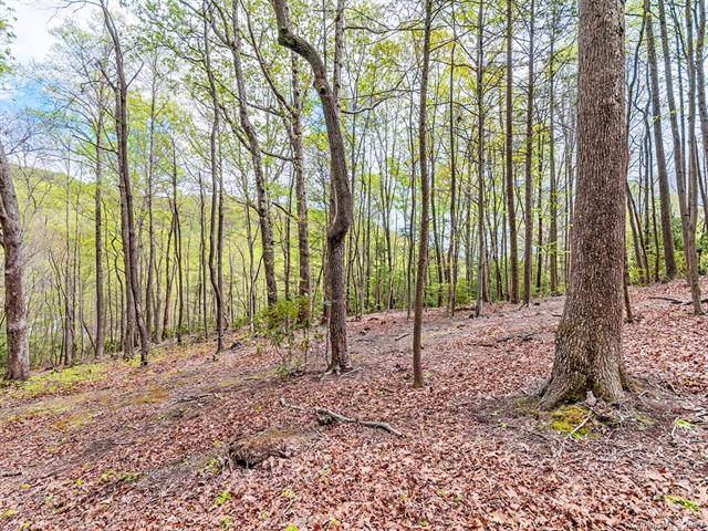 000 Laurel Creek Drive, Hendersonville, NC 28792 (#3544310) :: Rinehart Realty