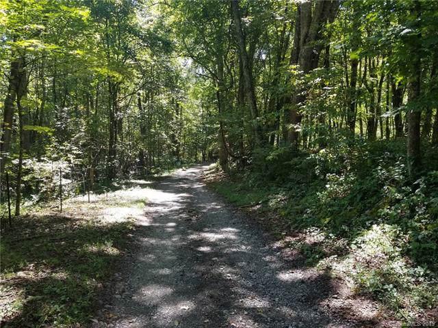 000 Haney Creek Road - Photo 1