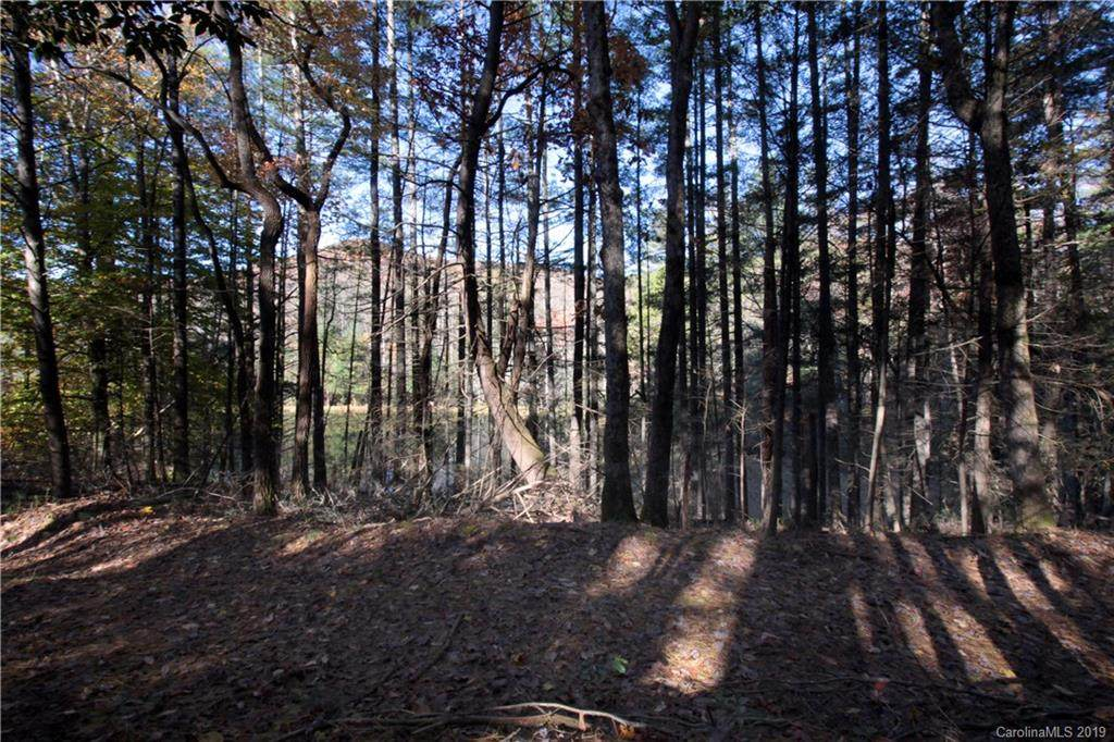 Lot 3 Whitaker Cove Road #3, Mills River, NC 28759 (#3545719) :: Carlyle Properties