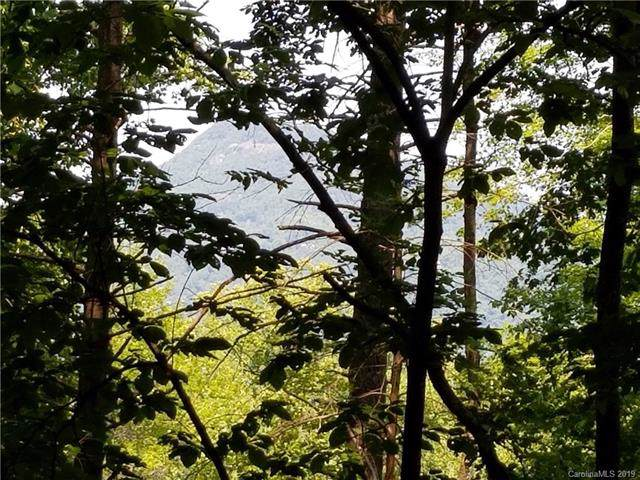 LOT # 336 Bolt Road #336, Lake Lure, NC 28746 (#3546187) :: Roby Realty