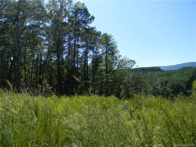 0 Silver Creek Road - Photo 1