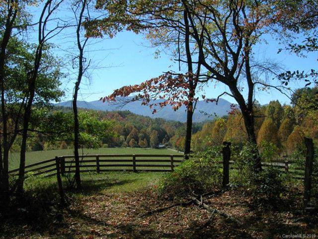 Lot #26 Sunkota Trail #26, Bryson City, NC 28713 (#3546653) :: Stephen Cooley Real Estate Group