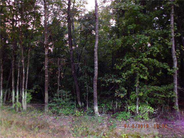 00 Riverview Drive, Fort Lawn, SC 29714 (#3547558) :: Rinehart Realty