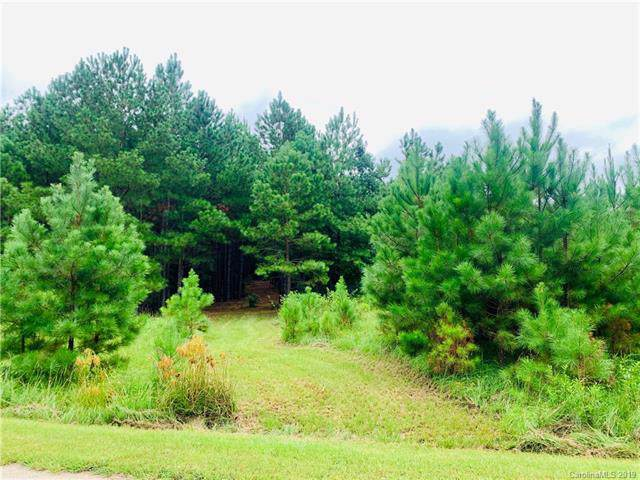 lot 89 Riverbluff Lane #89, Lilesville, NC 28091 (#3547566) :: Stephen Cooley Real Estate Group