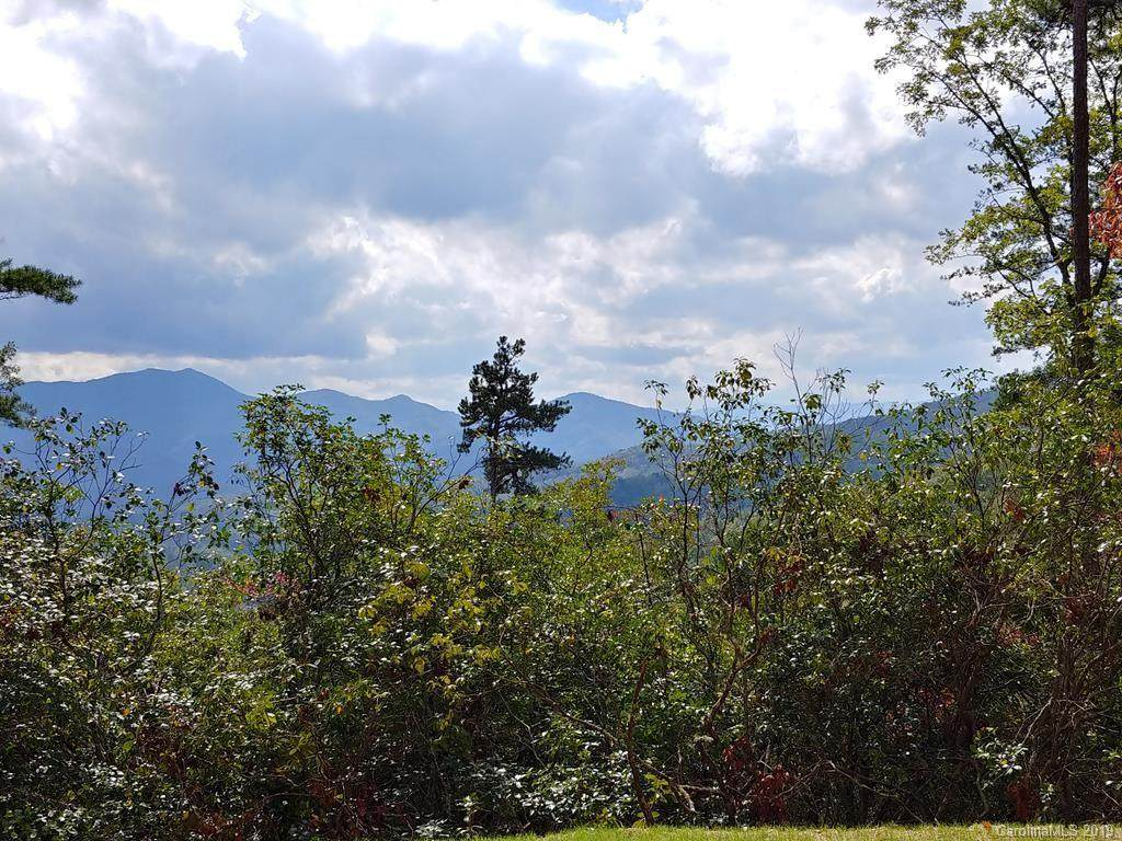 Lot #42 Thomas Divide Way - Photo 1