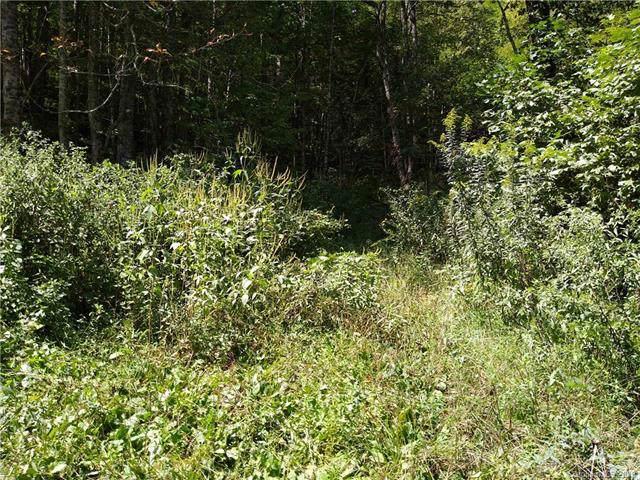 9999 Little Creek Road, Hot Springs, NC 28743 (#3547631) :: Scarlett Property Group