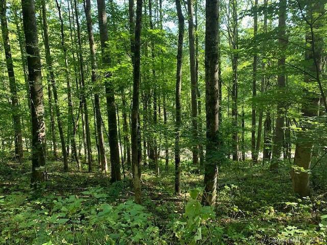9999 Alvins Fox Trail, Mars Hill, NC 28754 (#3547661) :: Rinehart Realty