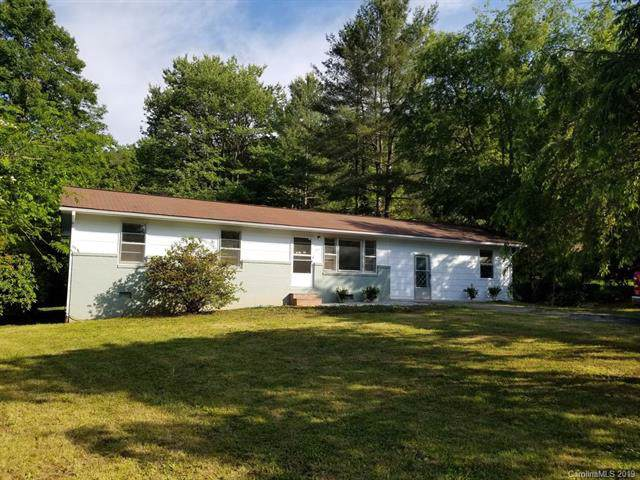 215 Holly Hill Road, Bryson City, NC 28713 (#3548360) :: Stephen Cooley Real Estate Group