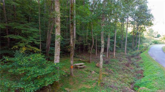 110 Gaither Ray Drive, Mars Hill, NC 28754 (#3549427) :: Robert Greene Real Estate, Inc.