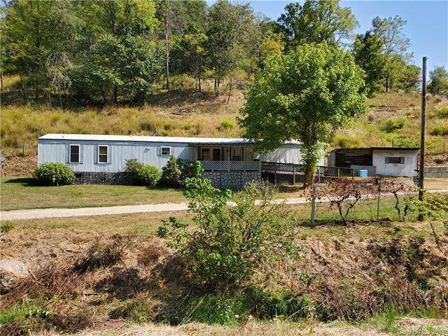 119 Chandler Branch Road, Weaverville, NC 28787 (#3549510) :: Francis Real Estate
